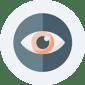 Maximise visibility icon