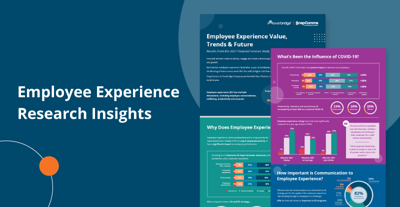 Employee experience research insights