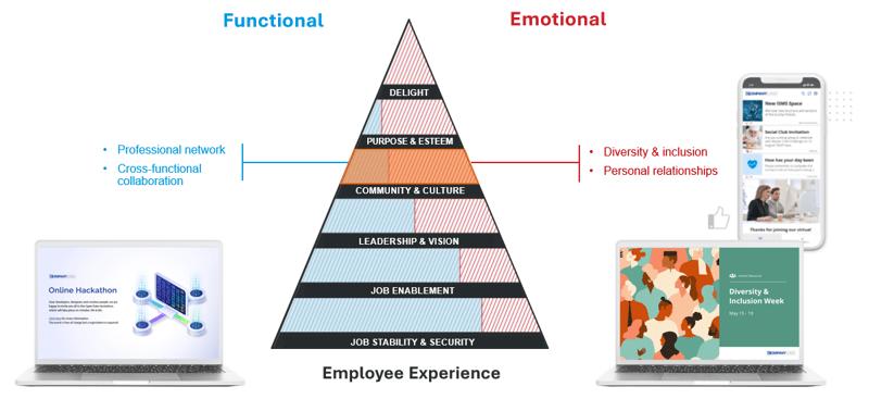 pyramid of needs community culture
