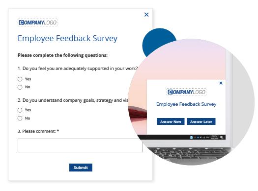 employee feedback survey