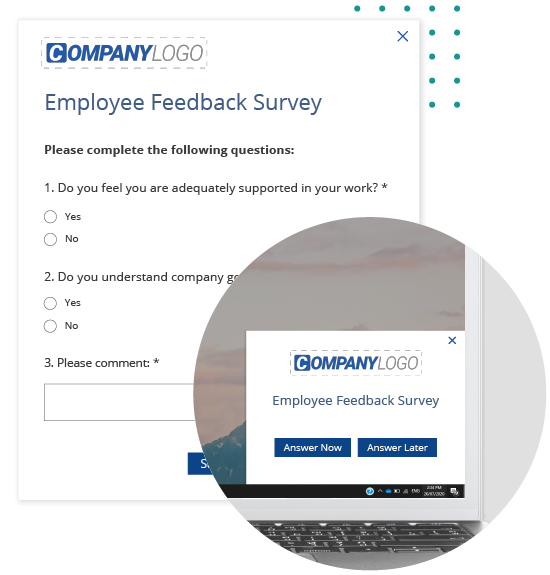 Employee Feedback Survey