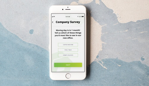 Company survey on mobile